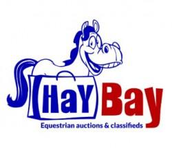 our-logo1