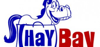 What is HayBay Equestrian Auctions /Classifieds ?